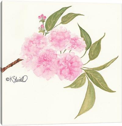 Bashful Blossoms Canvas Art Print