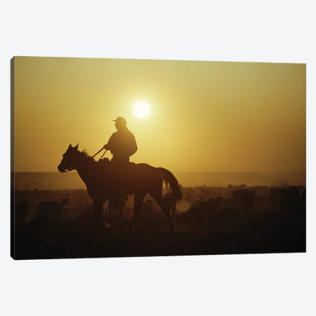 A Rancher Rounds Up Sheep On A Wyoming Farm Canvas Print #SRR156} by Joel Sartore Canvas Print