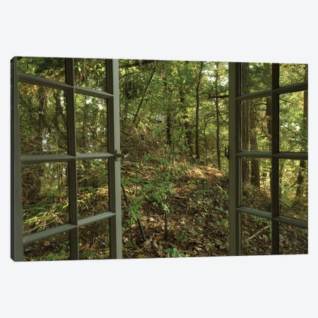 An Open Window Leads To The Back Woods Near Lake Champlain Canvas Print #SRR259} by Joel Sartore Canvas Art Print