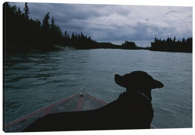 A Black Labrador Dog Travels Up The Kenai River On A Boat's Bow II Canvas Art Print