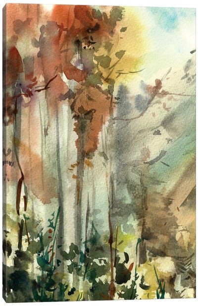 Autumnal Forest Canvas Art Print