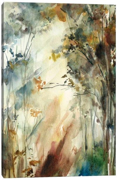 Autumnal Forest II Canvas Art Print