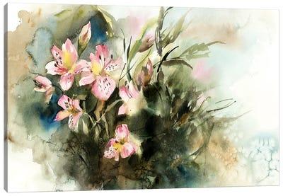 Alstroemeria Canvas Art Print