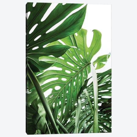 Jungle Canvas Print #SSE101} by Sisi & Seb Art Print