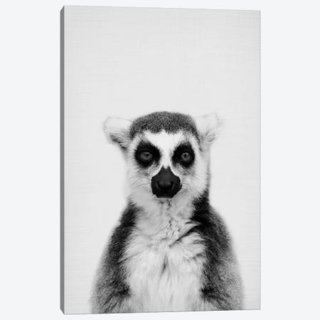 Lemur Canvas Print #SSE105} by Sisi & Seb Canvas Artwork