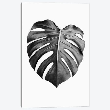 Monstera Leaf In Black & White Canvas Print #SSE122} by Sisi & Seb Art Print