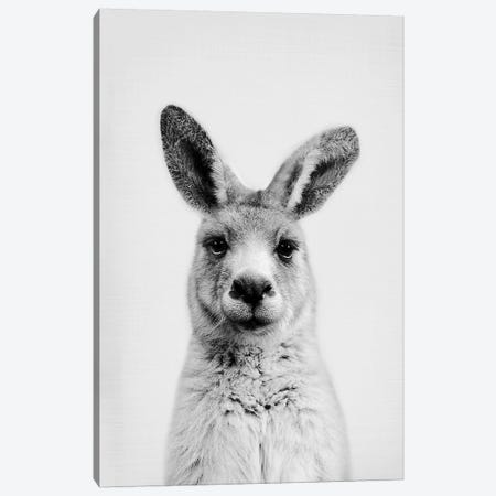 Mr. Kangaroo Canvas Print #SSE127} by Sisi & Seb Canvas Wall Art