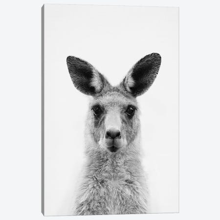 Mrs. Kangaroo Canvas Print #SSE128} by Sisi & Seb Canvas Art Print