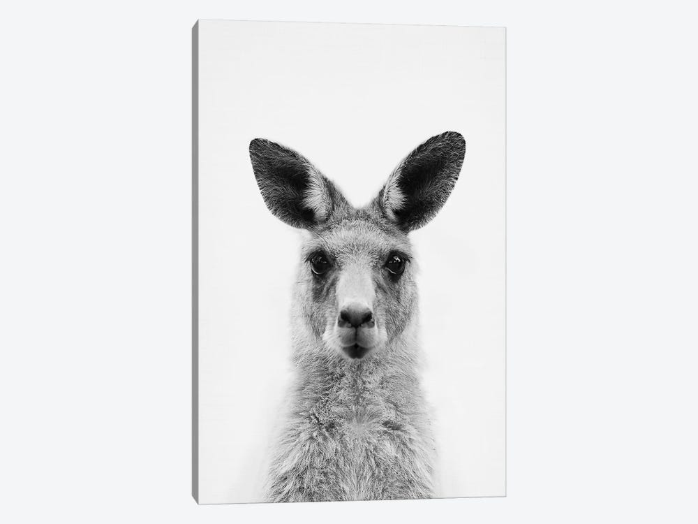 Mrs. Kangaroo by Sisi & Seb 1-piece Canvas Wall Art