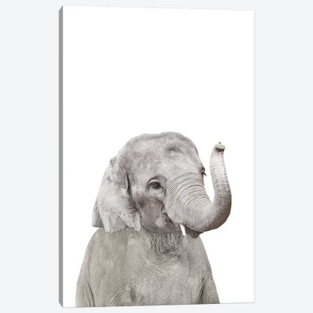 Baby Elephant Canvas Print #SSE13} by Sisi & Seb Canvas Wall Art