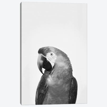 Parrot In Black & White Canvas Print #SSE141} by Sisi & Seb Canvas Print