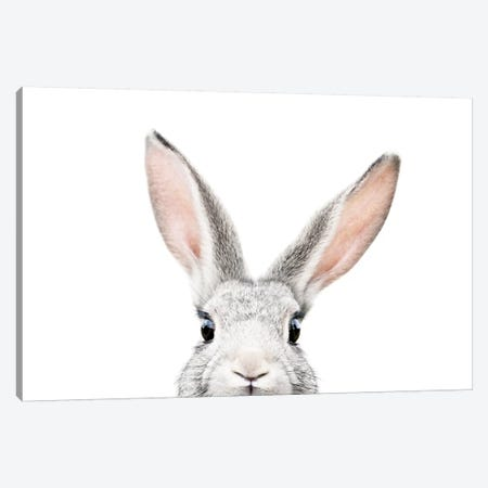 Peekabo Bunny Canvas Print #SSE145} by Sisi & Seb Canvas Artwork