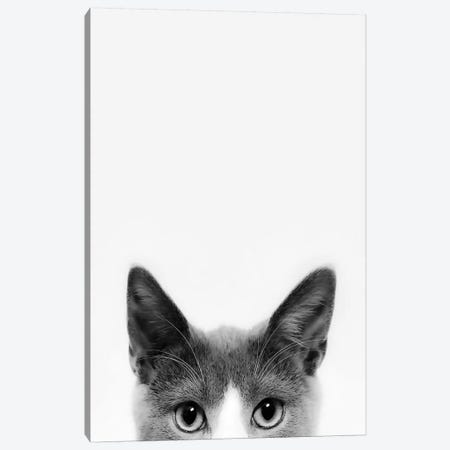Peekaboo Kitty Canvas Print #SSE146} by Sisi & Seb Canvas Wall Art