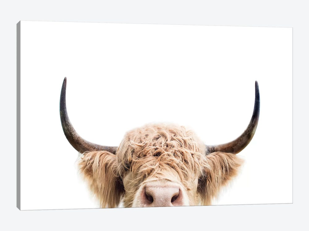 Peeking Cow by Sisi & Seb 1-piece Canvas Print