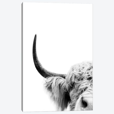 Peeking Cow II Canvas Print #SSE148} by Sisi & Seb Art Print