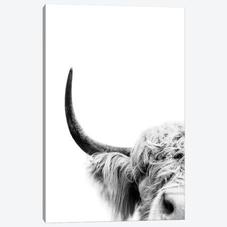 Peeking Cow II Canvas Print #SSE148} by Sisi & Seb Art Print