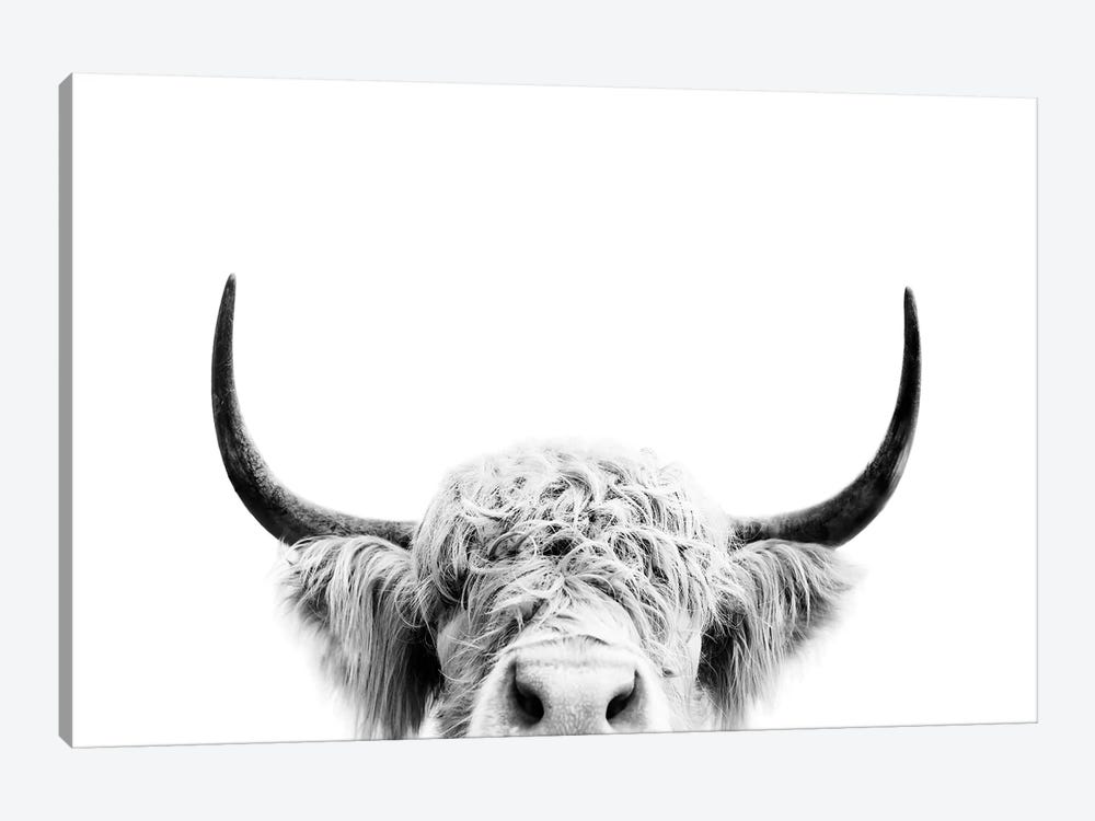 Peeking Cow In Black & White by Sisi & Seb 1-piece Canvas Print