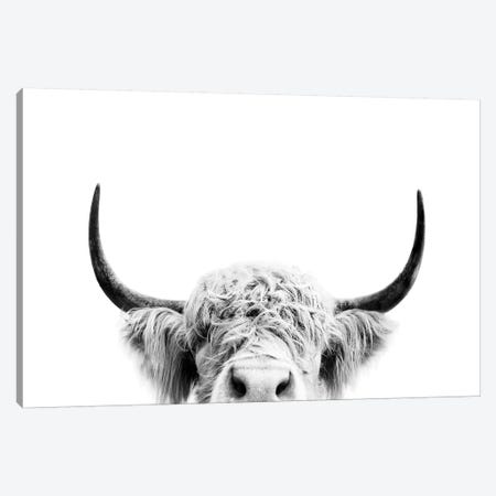 Peeking Cow In Black & White Canvas Print #SSE149} by Sisi & Seb Canvas Print