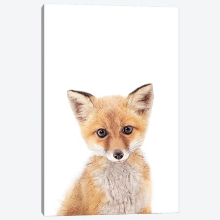 Baby Fox Canvas Print #SSE14} by Sisi & Seb Canvas Print