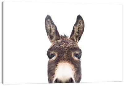 Peeking Donkey Canvas Art Print
