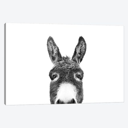 Peeking Donkey In Black & White 3-Piece Canvas #SSE151} by Sisi & Seb Canvas Art