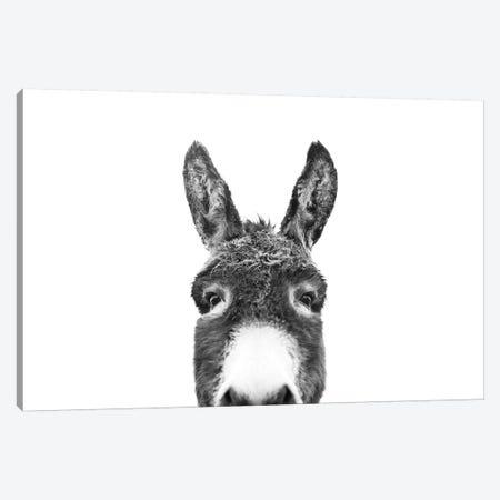 Peeking Donkey In Black & White Canvas Print #SSE151} by Sisi & Seb Canvas Art