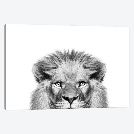 Peeking Lion Canvas Print #SSE153} by Sisi & Seb Canvas Art