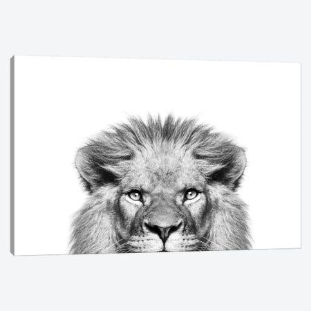 Peeking Lion Canvas Print #SSE153} by Sisi & Seb Canvas Art