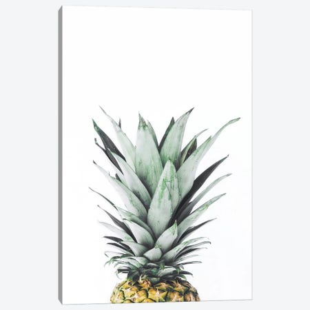 Pineapple Canvas Print #SSE158} by Sisi & Seb Canvas Art
