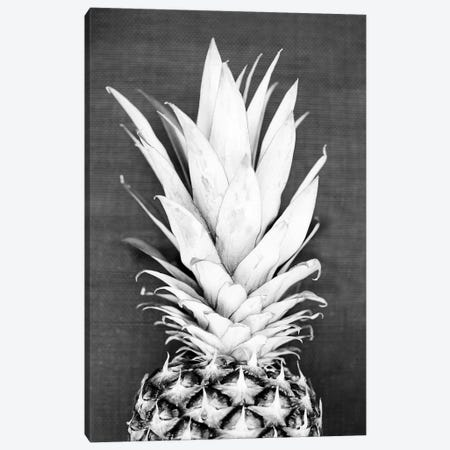 Pineapple In Black & White Canvas Print #SSE159} by Sisi & Seb Canvas Artwork
