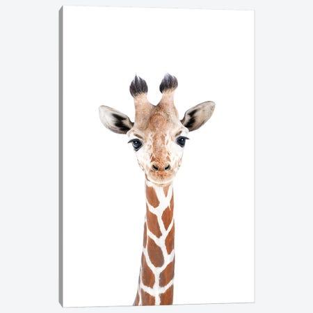 Baby Giraffe Canvas Print #SSE15} by Sisi & Seb Art Print