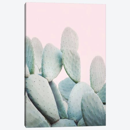 Pink Pastel Cactus Canvas Print #SSE167} by Sisi & Seb Canvas Wall Art