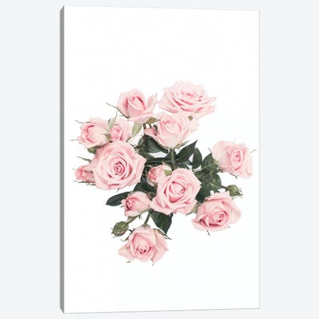 Pink Roses Canvas Print #SSE170} by Sisi & Seb Canvas Artwork