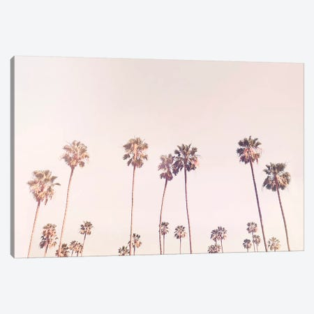 Sunny Cali Palm Tress Canvas Print #SSE193} by Sisi & Seb Canvas Artwork