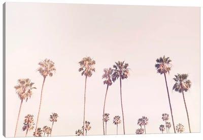 Sunny Cali Palm Tress Canvas Art Print