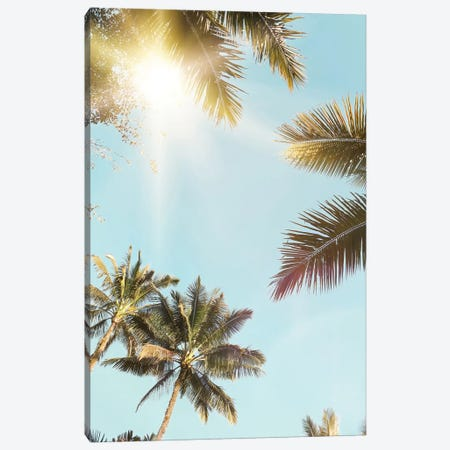 Sunny Palm Leaf Canvas Print #SSE194} by Sisi & Seb Art Print