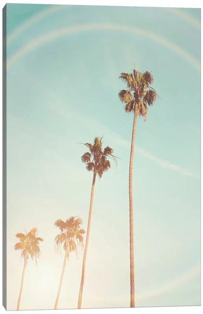 Sunny Palm Trees Canvas Art Print