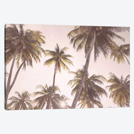 Tropical Blush Canvas Print #SSE201} by Sisi & Seb Canvas Art