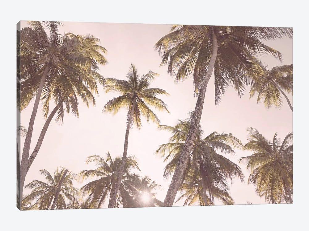 Tropical Blush by Sisi & Seb 1-piece Canvas Art Print