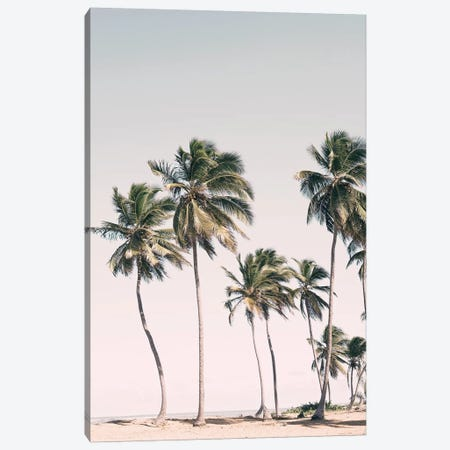 Tropical Paradise Canvas Print #SSE203} by Sisi & Seb Canvas Artwork