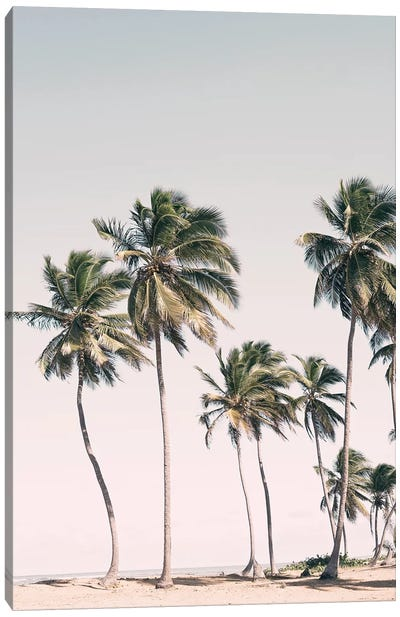 Tropical Paradise Canvas Art Print