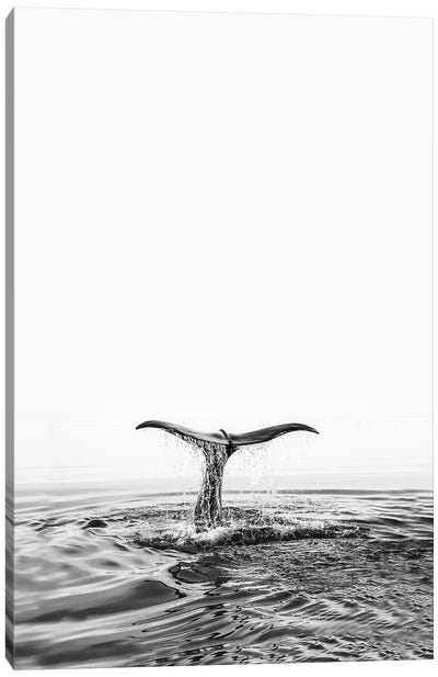 Whale Tale Canvas Art Print