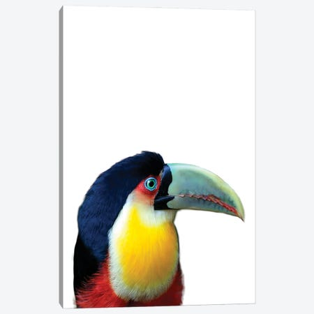 Toucan Canvas Print #SSE215} by Sisi & Seb Canvas Artwork