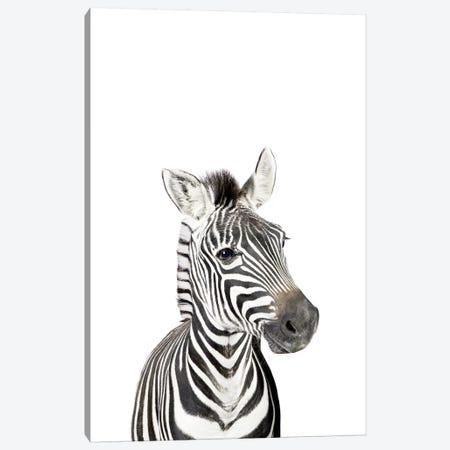 Baby Zebra Canvas Print #SSE23} by Sisi & Seb Art Print