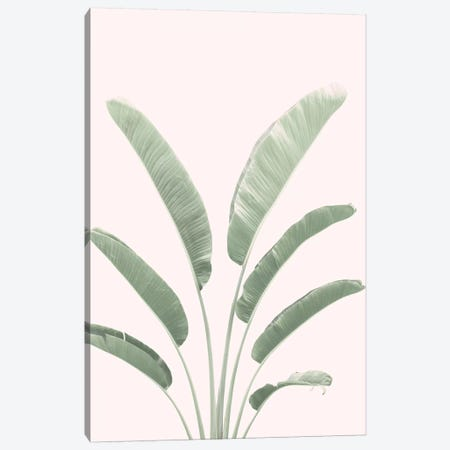 Banana Leaves Blush Canvas Print #SSE27} by Sisi & Seb Canvas Art