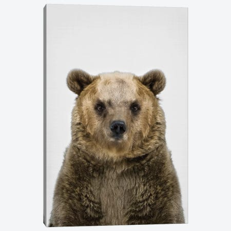 Bear Canvas Print #SSE29} by Sisi & Seb Canvas Art Print