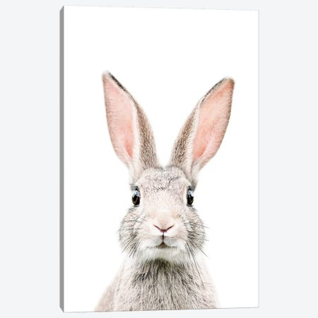 Bunny Canvas Print #SSE50} by Sisi & Seb Canvas Artwork