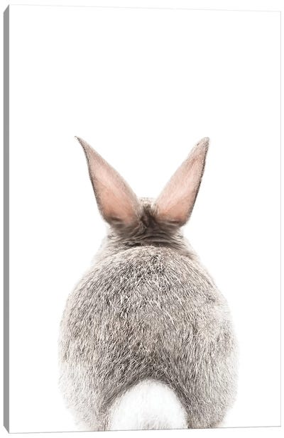 Bunny Tale Canvas Art Print