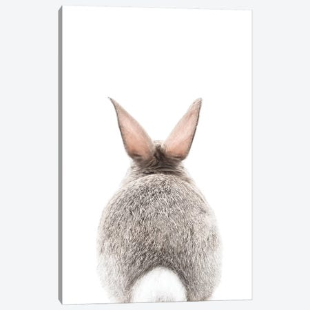 Bunny Tale Canvas Print #SSE51} by Sisi & Seb Canvas Art