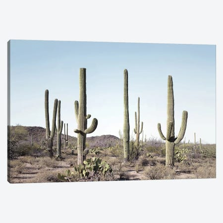 Cactus Land Canvas Print #SSE54} by Sisi & Seb Art Print